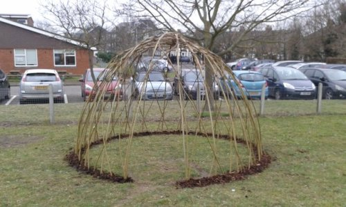 willow dome.